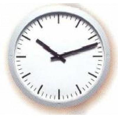 BTWL-ANFR40 BTWL-ZNFR40 Вторичные аналоговые часы наружного исполнения