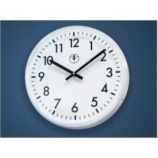 Часы стрелочные вторичные СВ30.ДС24